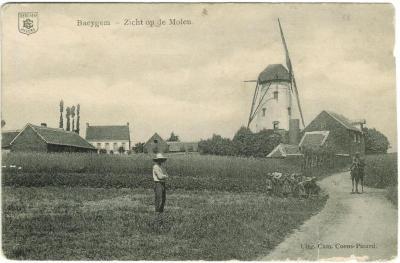 Baeygem - Zicht op de molen