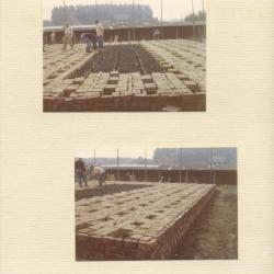 Steenbakkers: de fauw eerste lagen van de oven