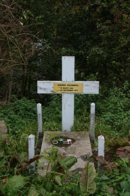 Grafsteen Agnes Desimpel