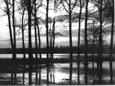 Overstroming van de Leie te Sint-Martens-Latem