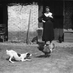 Hond, kip en Alma D'Haenens