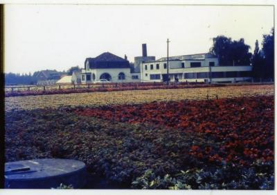 Villa bloemisterij Van Speybroeck