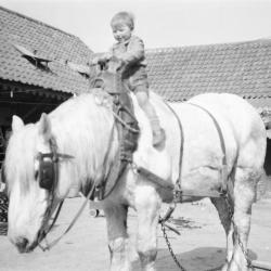 Rijdend op het 'paard van Sinterklaas'