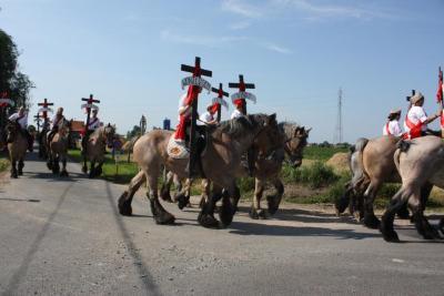 Heilig-Bloedprocessie te Meigem in 2013
