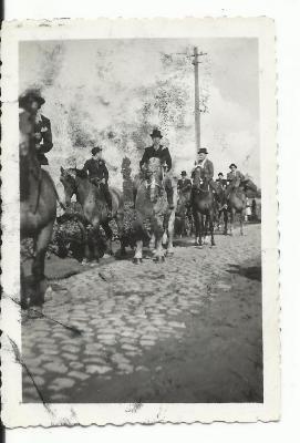 Paarden in de Gaverse reuzenstoet