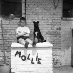 Molly, bekende Vinktse hond