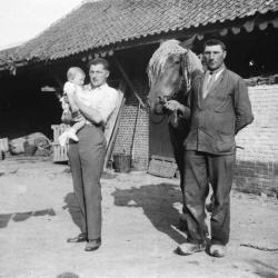 Familie D'Haenens en werkpaard