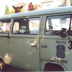 Politie in Canteclaerstoet, Deinze, 1987