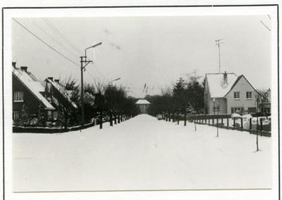 De Pintse Kasteellaan in de sneeuw