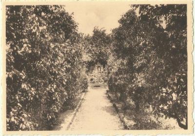 Dreef in tuin van klooster van de zusters van het Heilig Hart van Maria