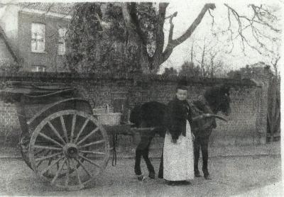 Poseren met koets en paard